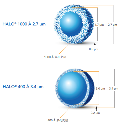 HALO BioClass Protein